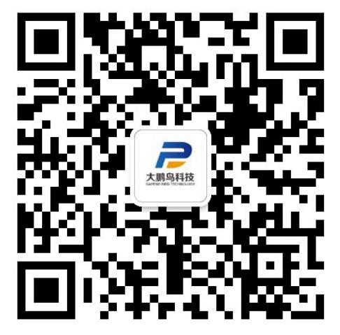 重庆大鹏鸟科技有限公司